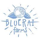 FBC7 BlueRai_RGB_FA.jpg