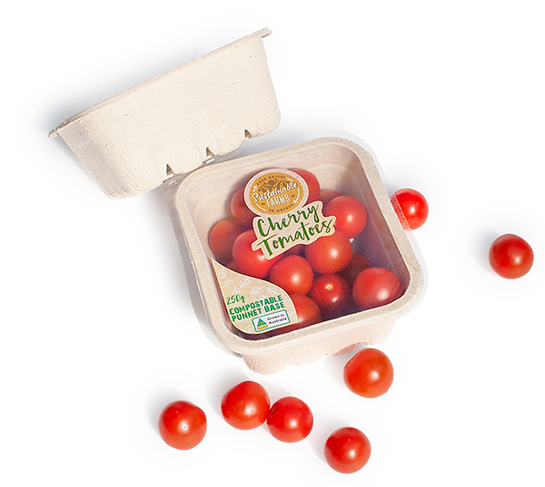 FBC17-Cherry-Tomatos_web.png