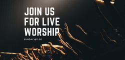 Join Us for live worship at 11