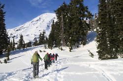 Seattle Day Trips Mount Rainier