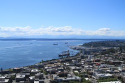 Looking West from the Space Needle
