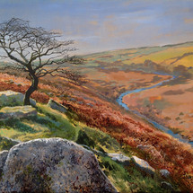 Hawthorn on River Tavy - SOLD