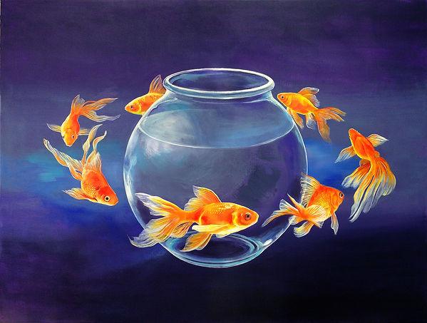 Goldfish XXVII new.jpg