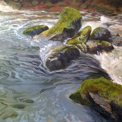 River Taw II, Dartmoor