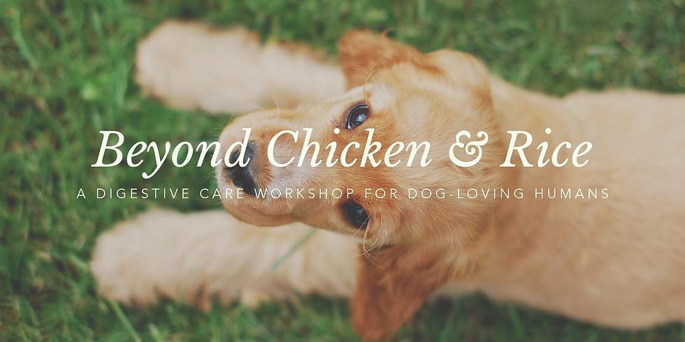 Beyond Chicken & Rice: A Digestive Care Workshop for Dog-Loving Humans