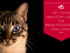 Pet food industry lies & the #RealFood4Pets Challenge