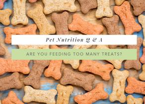 Are you feeding your pet too many treats?