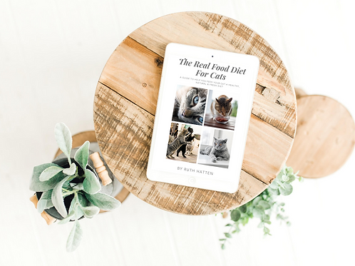 The Real Food Diet for Cats eBook