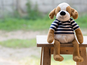 Your dog is not a doll (& neither is your cat)