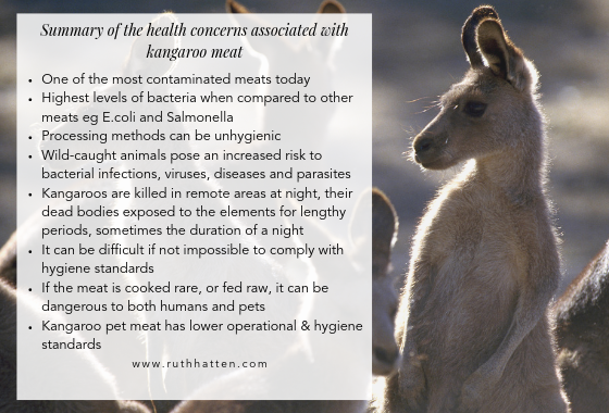 recommend feeding kangaroo to pets