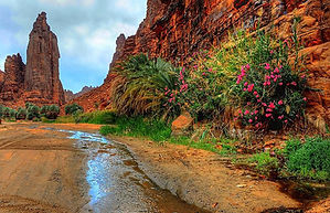 Nature-in-aldeesa.jpg