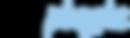 Promo Logo Black Pale Blue.png