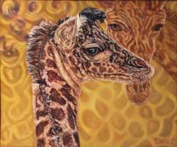 Giraffe baby with protective Mama