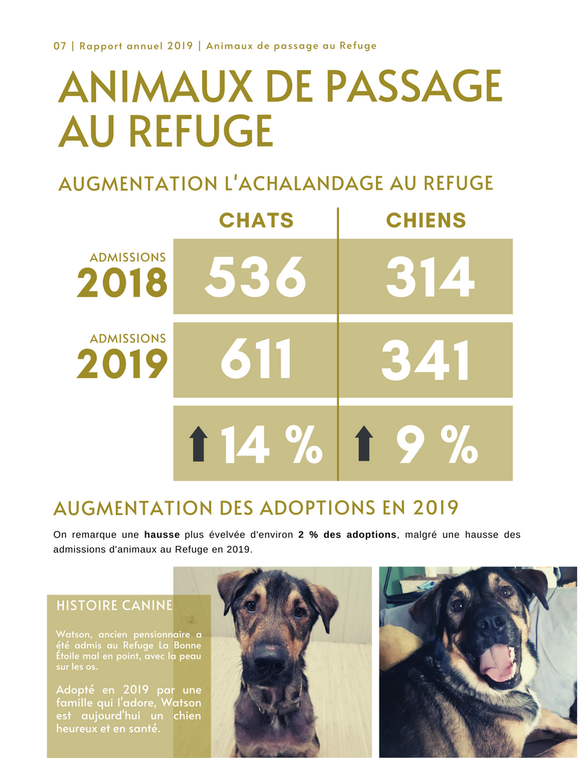 Rapport_Annuel_p7.png