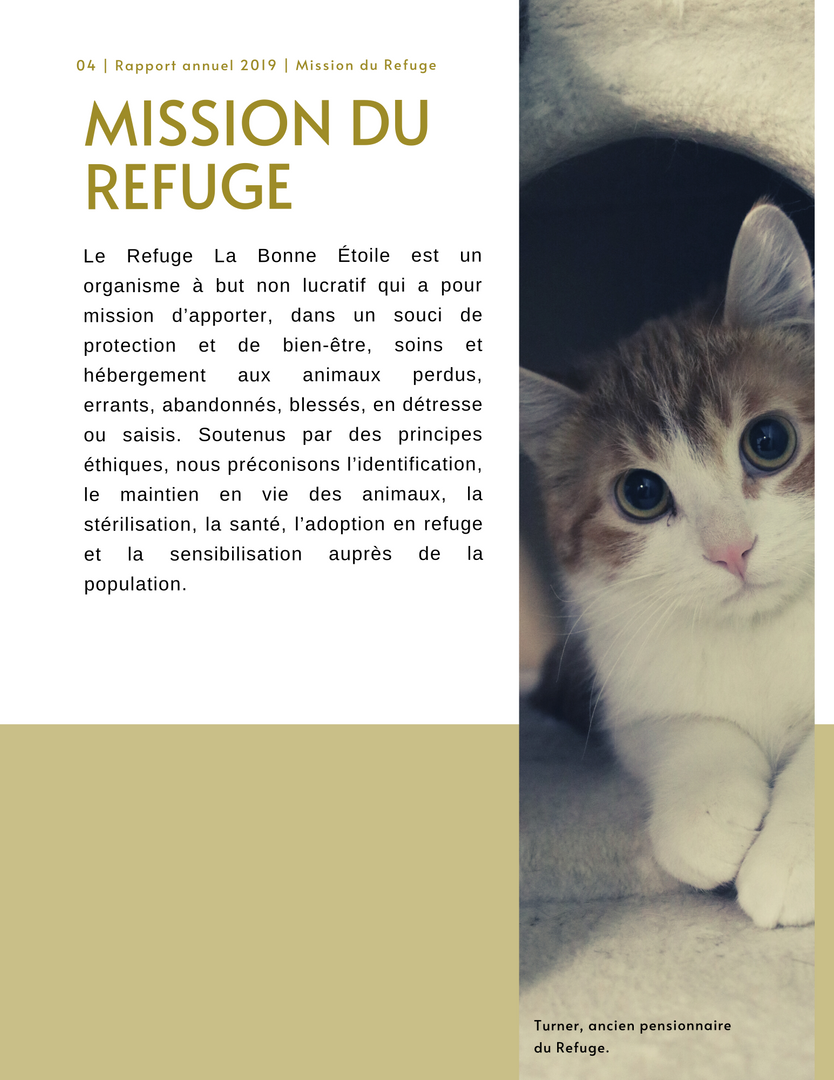 Rapport_Annuel_p4.png
