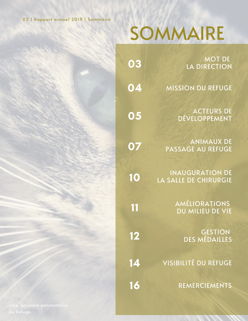 Rapport_Annuel_p2.png
