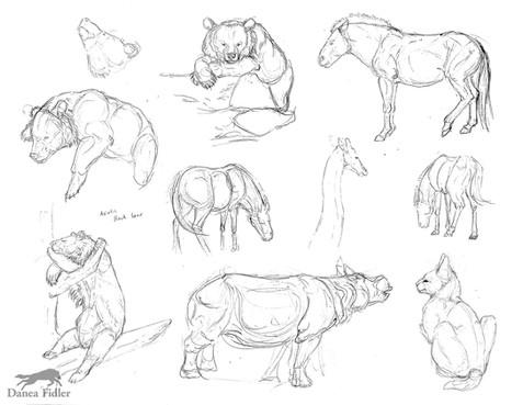 Zoo sketches 2016 - WEB.jpg