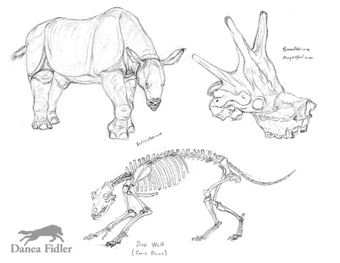 Prehistoric mammals - WEB.jpg