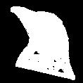 Icon Design Köln