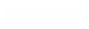 StA_Logo_Main_900px_Wht PNG.png