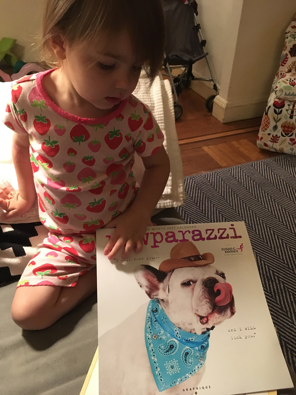 Sometimes a nighttime story includes the French Bulldog calendar her Aunt gave her for Christmas.
