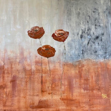 Copperfield Poppies.jpg