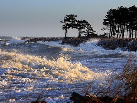 Ønsker Reersø at blive del af Naturpark Åmosen?