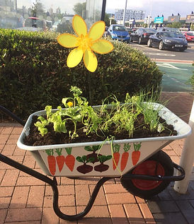 Wheelbarrows for Change by Edgelands Art