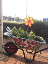 Wheelbarrows for Change