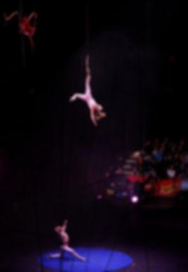 Ringling Bros Circus 2013