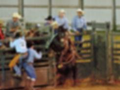 Marshall County Fair Rodeo