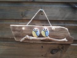 Owls on Wood