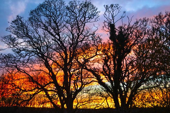 Fiery-Sky-16-x-12.jpg
