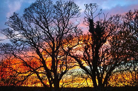 Fiery Sky, Pembrokeshire
