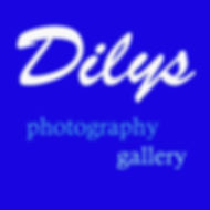 Dilys -  Sign for Gallery.jpg