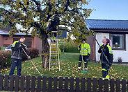 Trädbeskärning Brukets Allservice.jpg