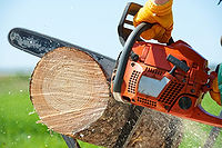 Trädfällning Brukets Allservice.jpg