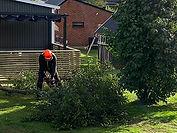 Trädgårdsarbeten Brukets Allservice.jpg