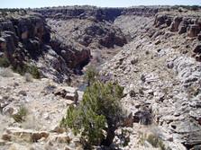 Chev Canyon 2