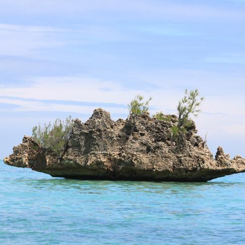 Crystal Rock, Le Morne