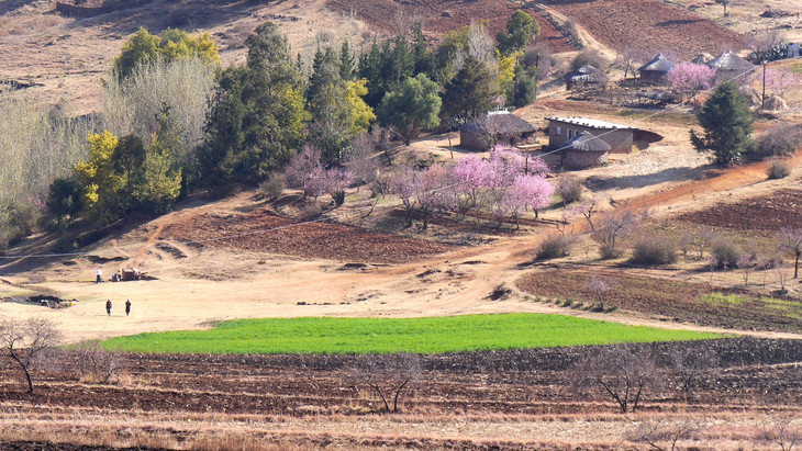 Lesotho Hills
