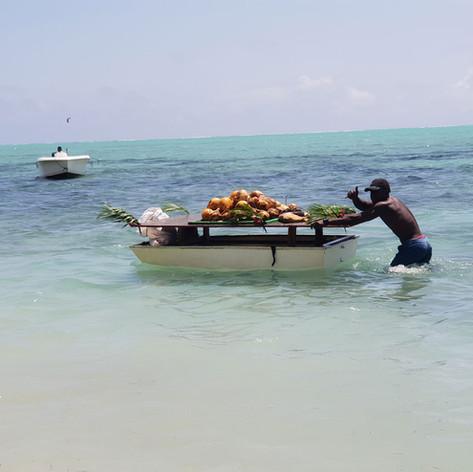 Mauritius Trader