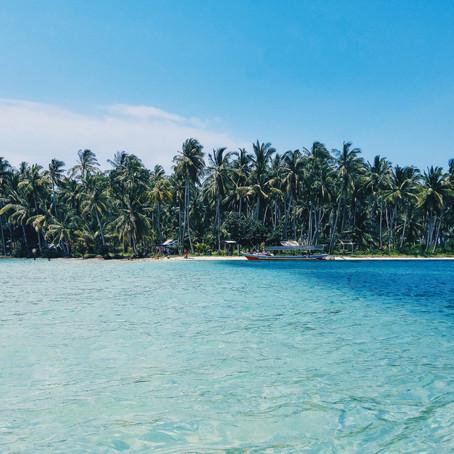 جزیره اسرار آمیز  تنهایی