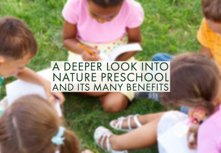 A Deeper Look Into Nature Preschool and Its Many Benefits