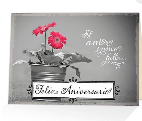 Spanish Card- Feliz Aniversario