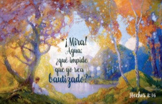Spanish Greeting Card- Mira! Agua
