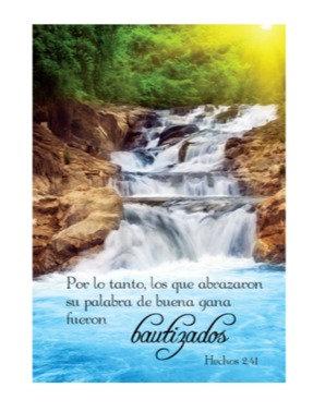 Spanish Greeting Card- Fueron bautizados