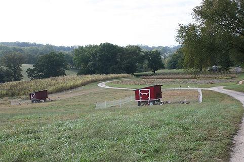 reduced_farmland4.JPG