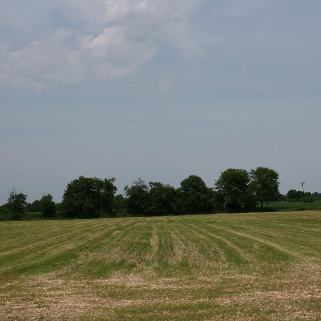 pasture seeding.JPG