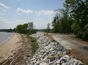 Army Creek Dike North End.JPG